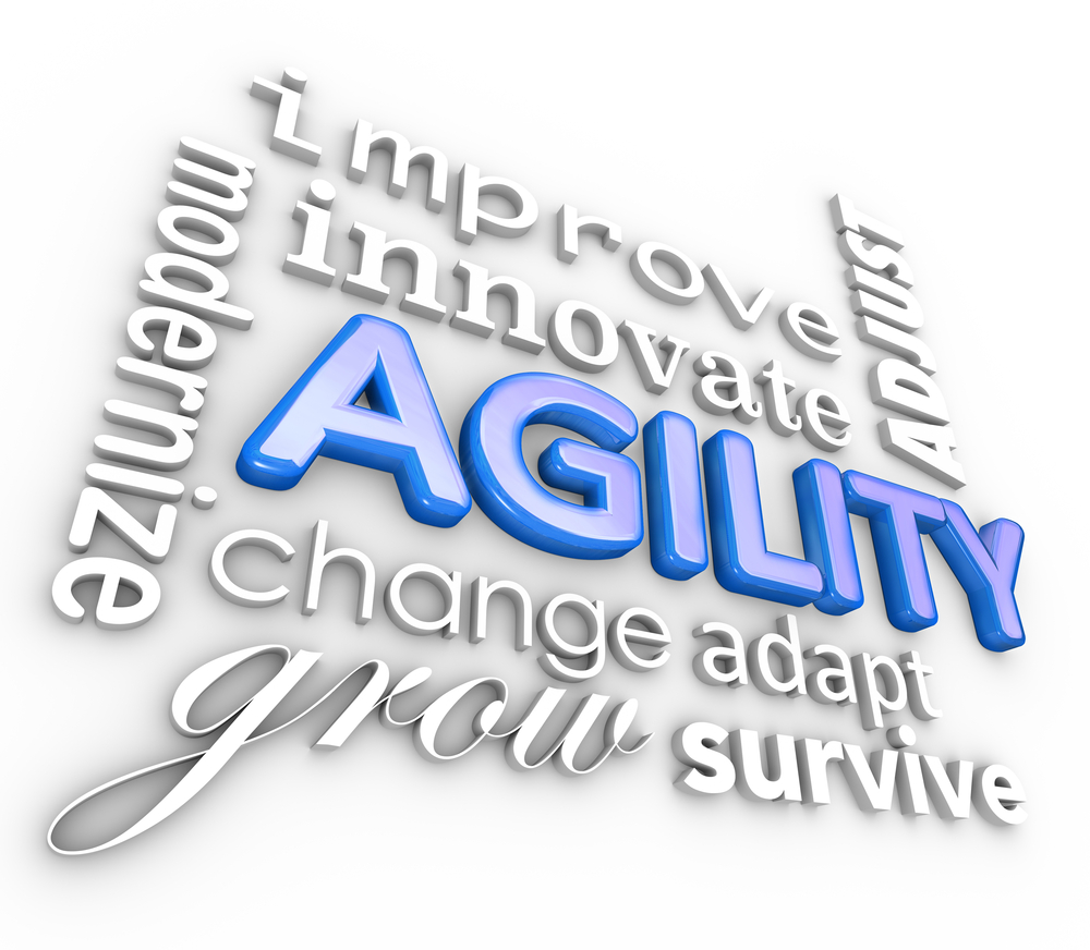 Agility-adjust-transform